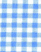 Blue Gingham polonecks
